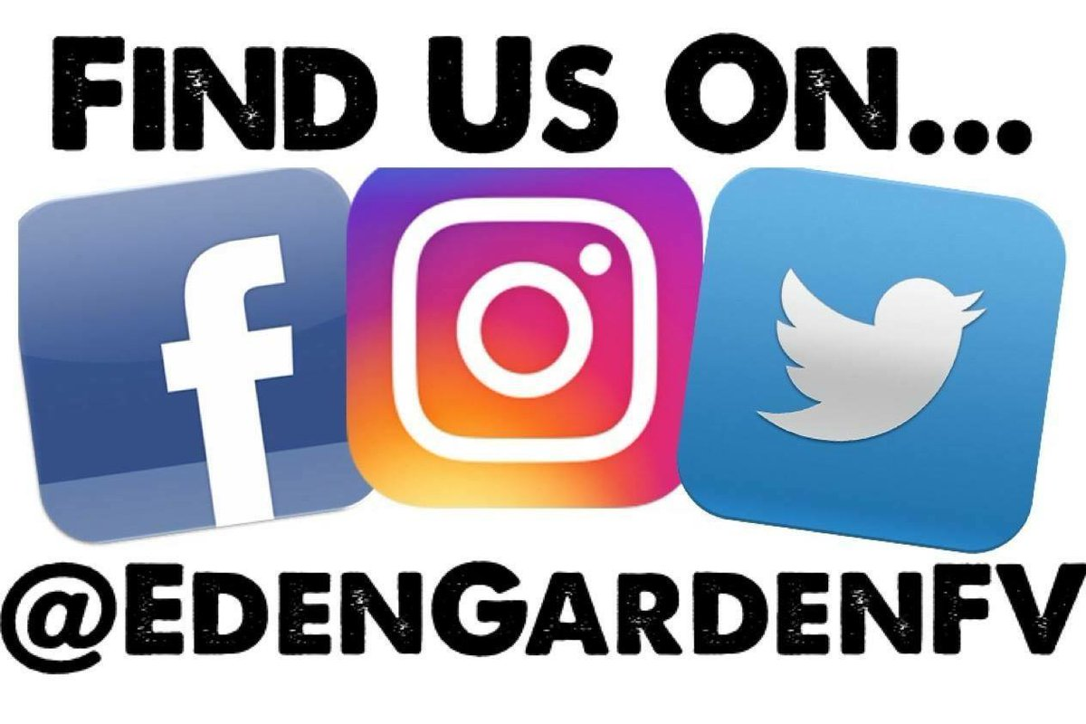 Follow Us On Facebook And Instagram Logo