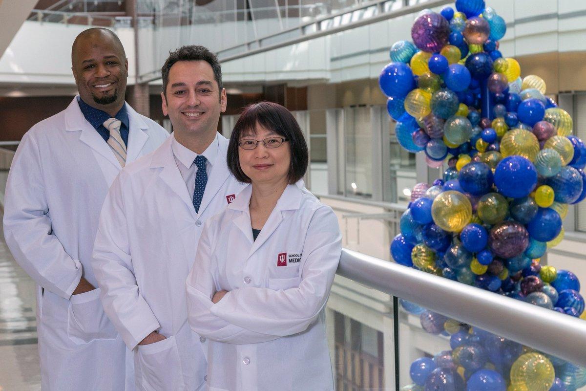 Indiana University awarded $9 million for #3Dbioprinted organ research. #3dbioprinting #3dbioprinternews #bioprintingtechnology #organprinting https://buff.ly/2tA1E0Upic.twitter.com/hTxjh0bPSR