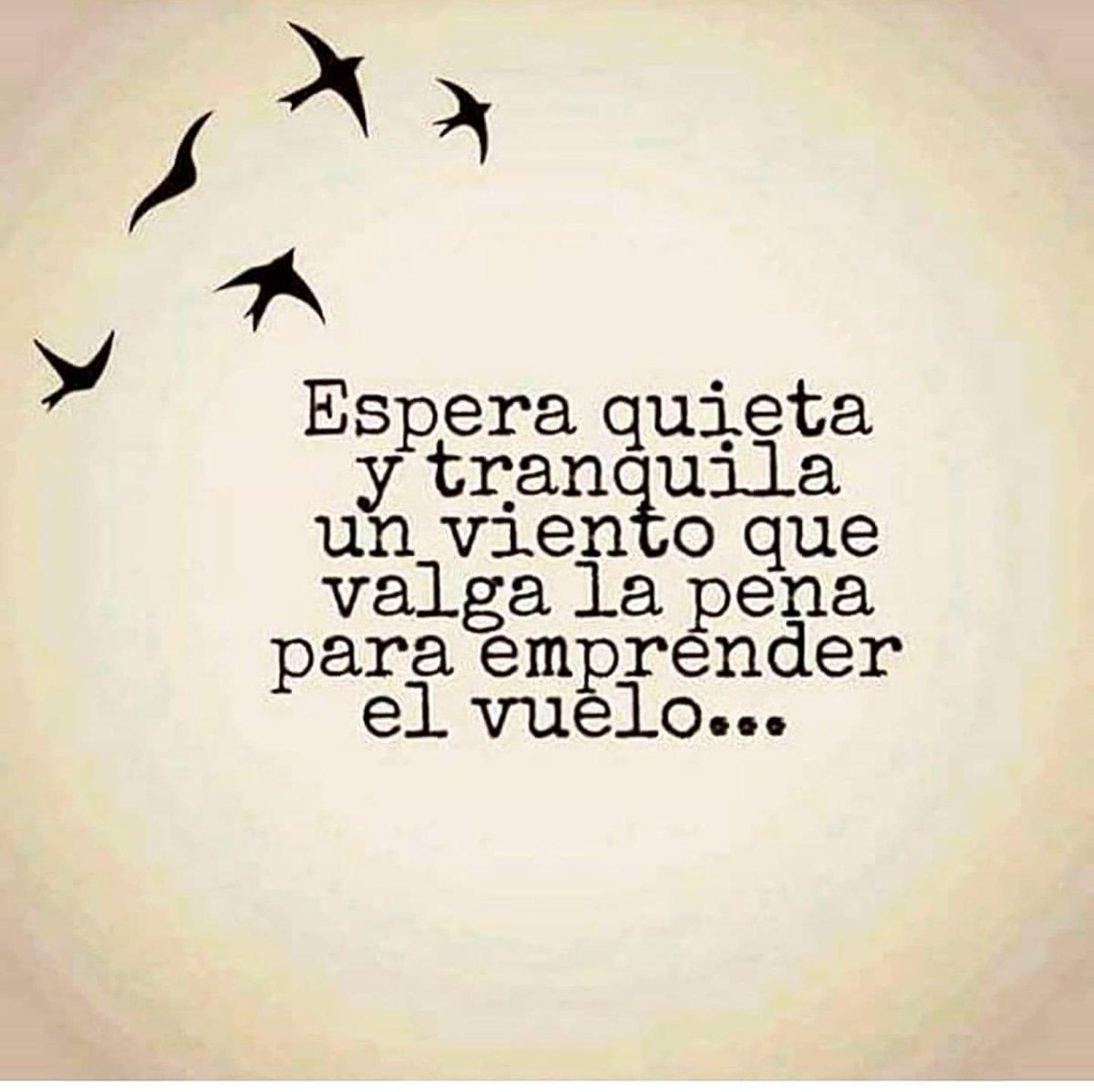 Quijotadas De Amor On Twitter Quijotadasdeamor Espera