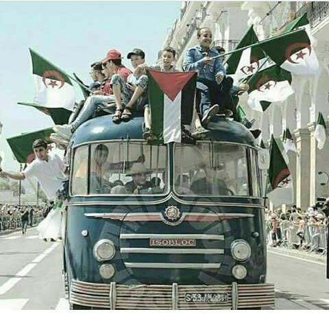 #عيد_استقلالك_يا_جزاير blood and soul..  #Palestine #Algeria #قروب_فلسطيني #5Juillet1962 #5جويليه_انتصار_الجزاير<br>http://pic.twitter.com/ukN19rqfRi