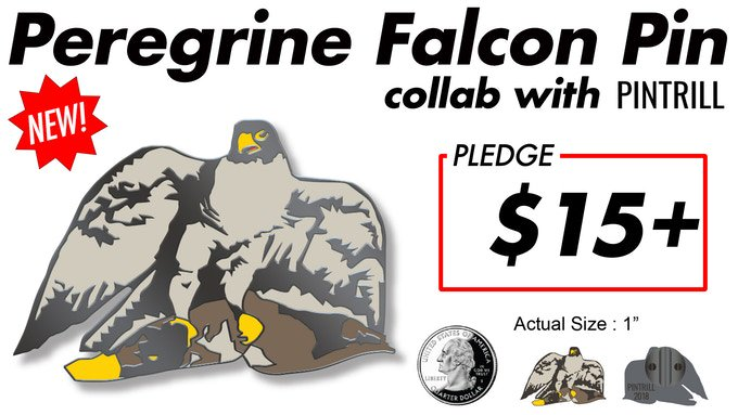 The Birds on Broadway public art installation is now halfway to its pledge goal on Kickstarter! To celebrate, we are offering a cool new reward to backers. The next 100 pledges of $15+ can receive this Peregrine Falcon pin from Brooklyn-based @PINTRILL. kck.st/2sSA7rh