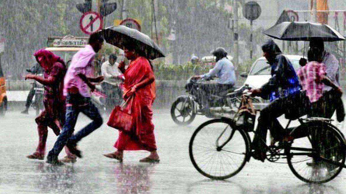 Image result for વરસાદ vtv