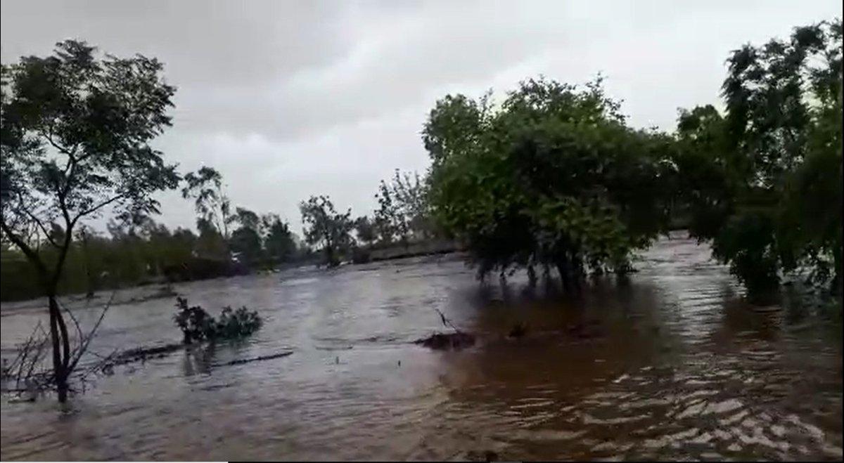 Image result for નદીમાં પુર