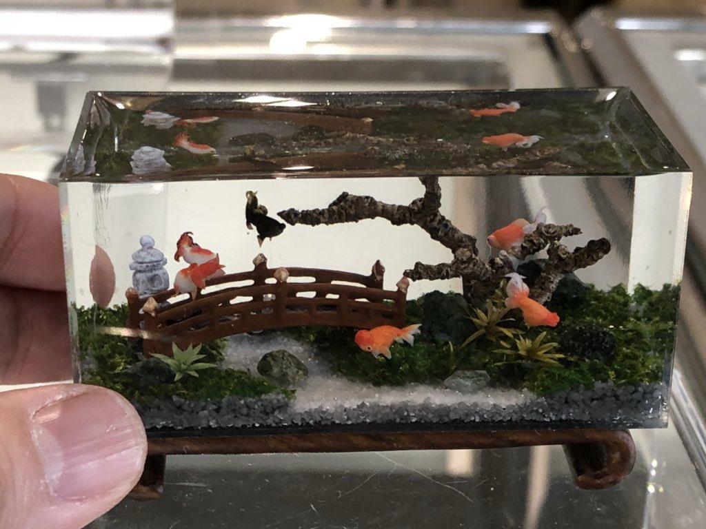 """1/12日本庭園風金魚水槽 おはようございます! 大阪はやっと雨があがりました。 阪神""""金魚と海のいきもの展""""5日目スタートします。"""