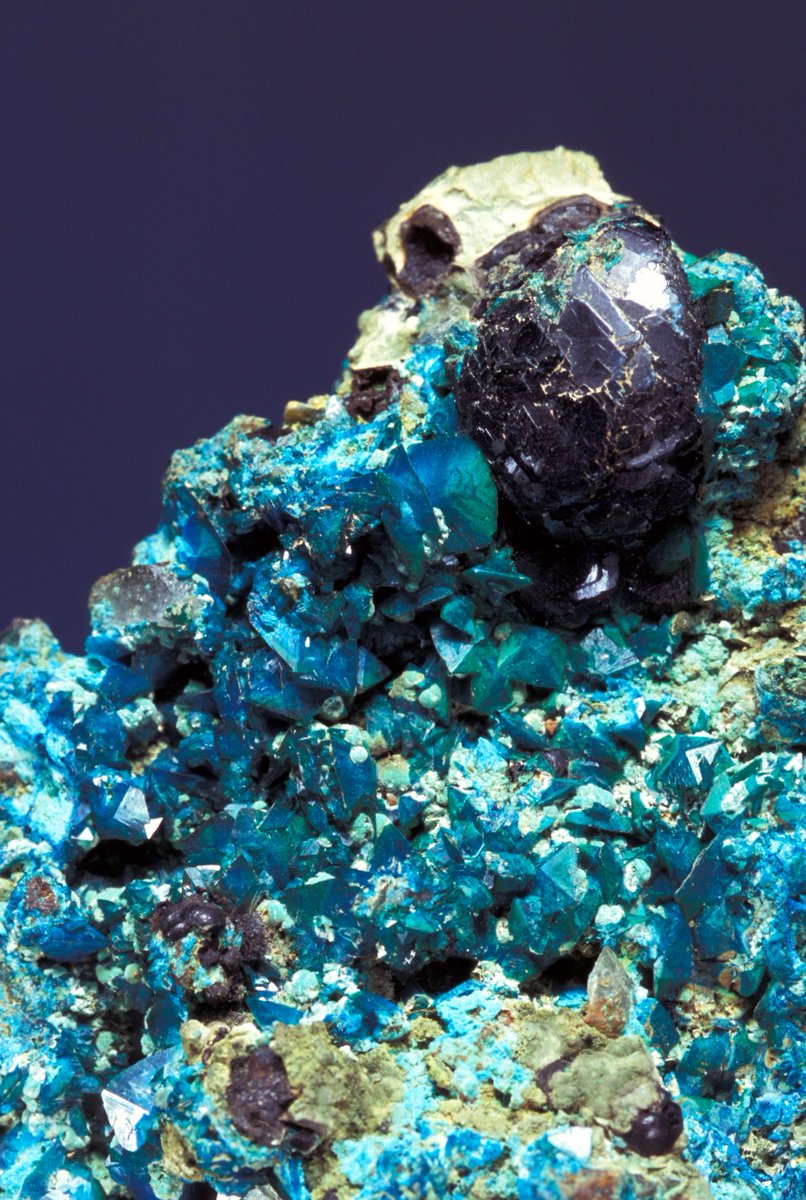 a description of osmium which was discovered in 1803 by tennant The description of the element in its natural form biological role  in 1803, smithson tennant added platinum to dilute aqua regia, which is a mixture of nitric and hydrochloric acids, and observed that not all the metal went into solution  even the man who discovered osmium treated it rather sniffily perhaps in part that's because.