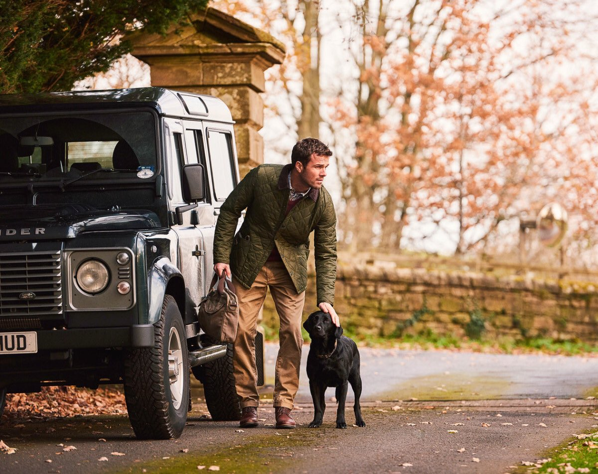 land rover barbour dog