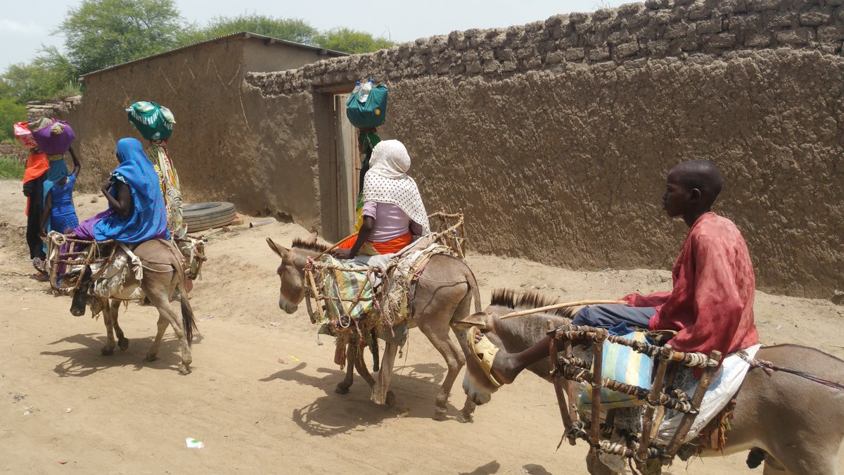 chad africa report Report abuse help on chad africa please.
