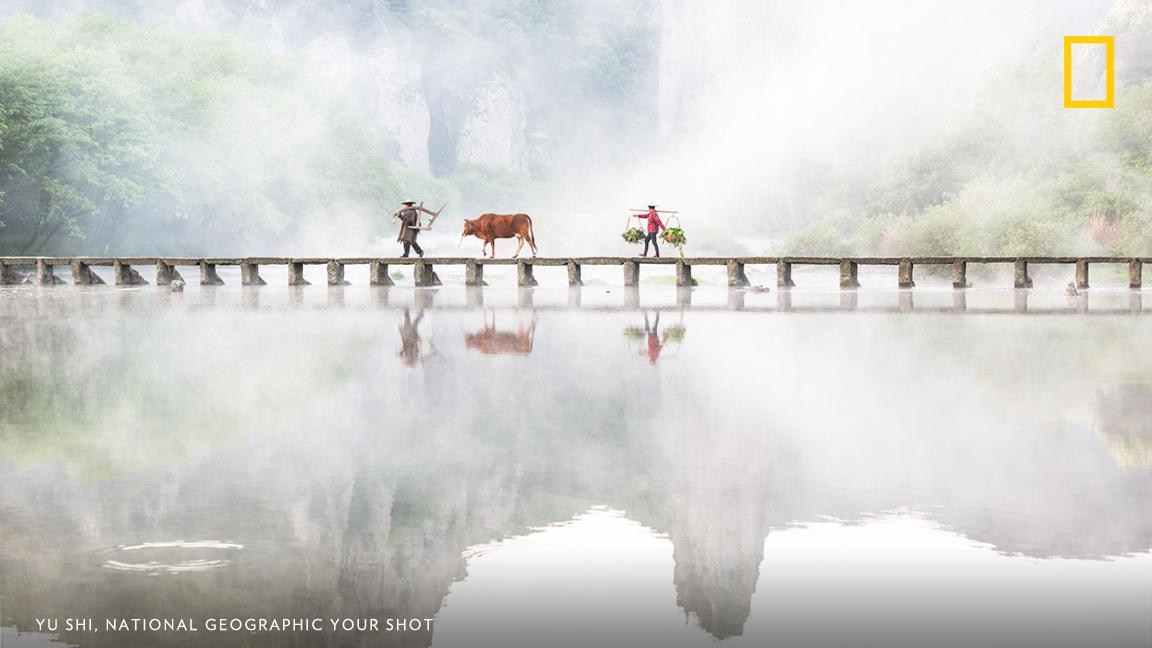 After waiting carefully for this moment, Your Shot photographer Yu Shi captured this image of a foot bridge south of Shanghai in the early morning https://on.natgeo.com/2u4ysj2