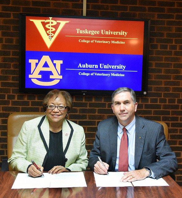 Auburn University Picture