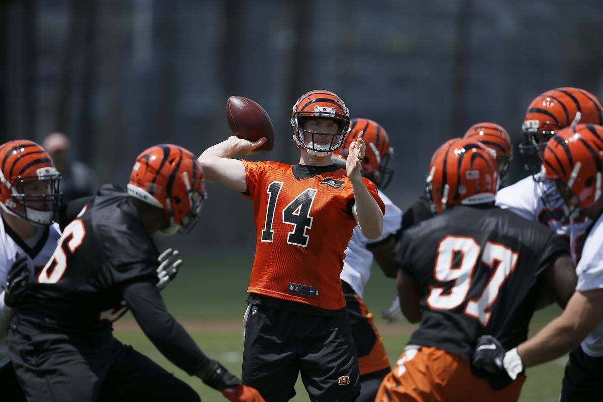 Image result for bengals training camp 2018