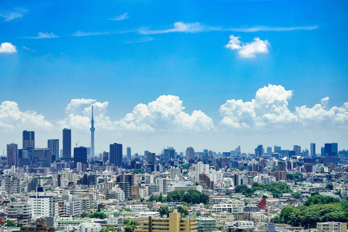東京っぽい夏が撮れた