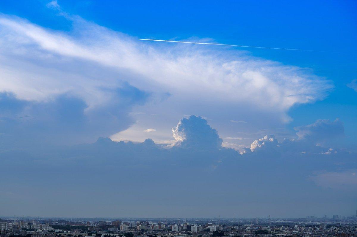 せっかくだし帰りも撮るか…と寄ったらいい感じの飛行機雲が撮れたので、みんなも追いかけて追いかけて丘を越えてくれよな!