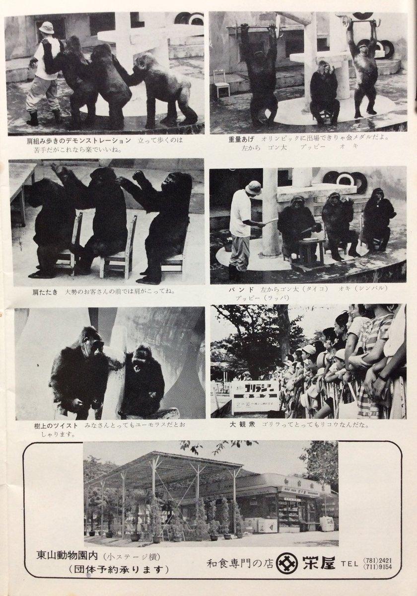 名古屋 市 東山 動物園