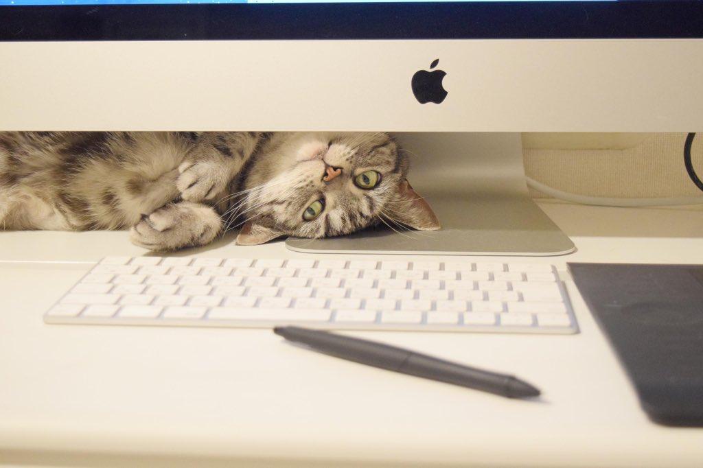 サクサク作業したくてiMacにかえたのにノートの時より格段に作業効率が落ちている…?
