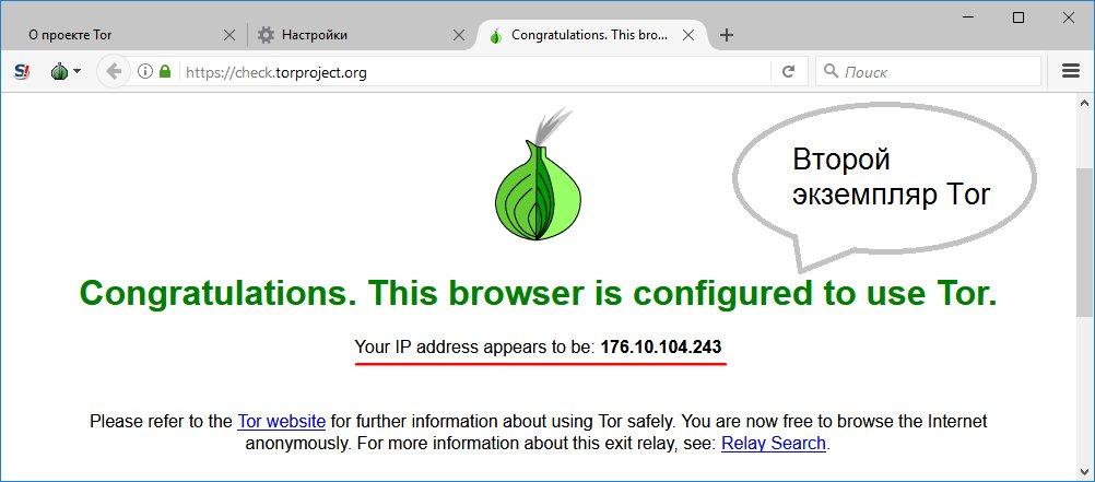 запуск нескольких tor browser hydraruzxpnew4af