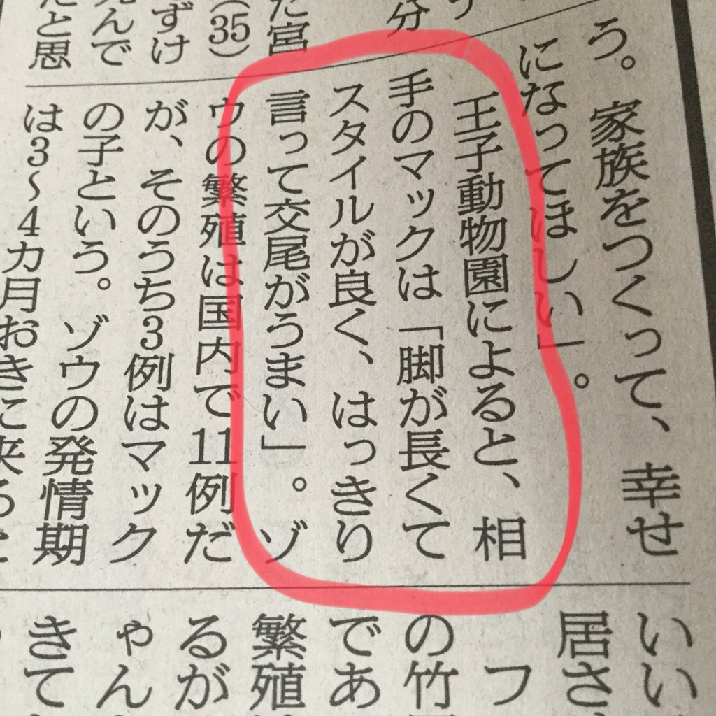 今朝の朝日新聞宮崎版、フェニックス自然動物園のメスのゾウ「みどり」が、繁殖活動のために一時的に神戸市の王子動物園に行くという記事より。相手のゾウは「はっきり言って交尾がうまい」というパワーワードが紙面を飾る。