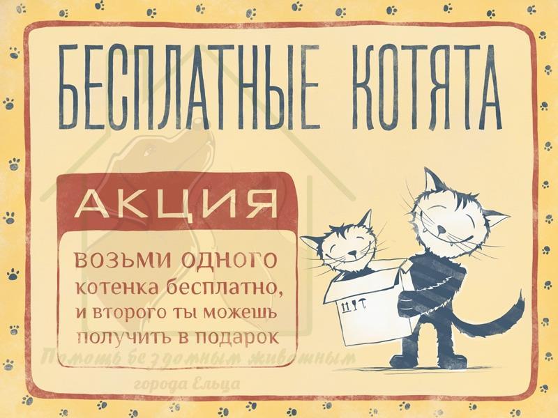 котята в добрые руки картинка надпись меню ресторана старый