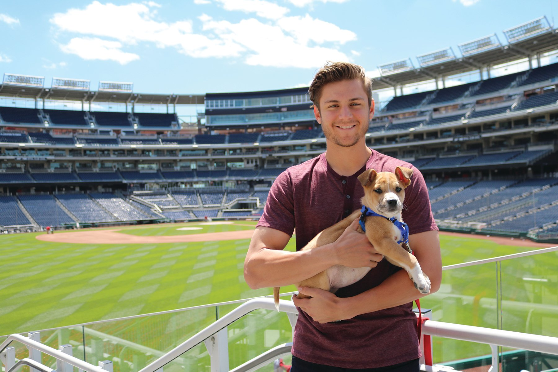 @UMBCAthletics @Cardinals @MattCarp13 Trea Turner loves doggos AND leads all NL shortstops in fWAR. https://t.co/uzQPZB5pTh