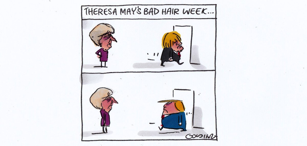 Mattgolding Cartoons On Twitter Theresa May S Bad Hair Week Smh