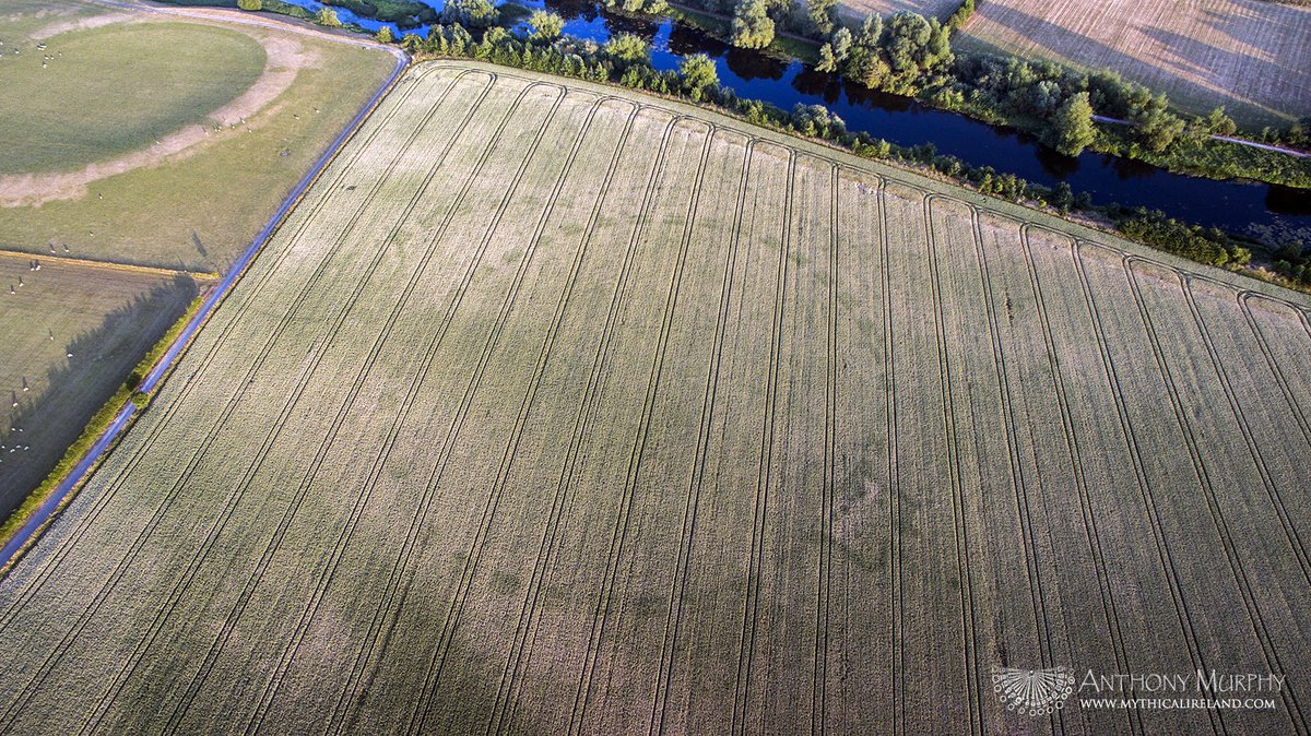 Drought and Drone Reveal 'Once-in-a-Lifetime' Signs of Ancient Henge in Ireland