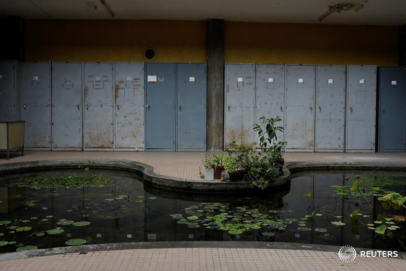 Water lilies are seen in Venezuela's national herbarium at the botanical garden in Caracas, Venezuela