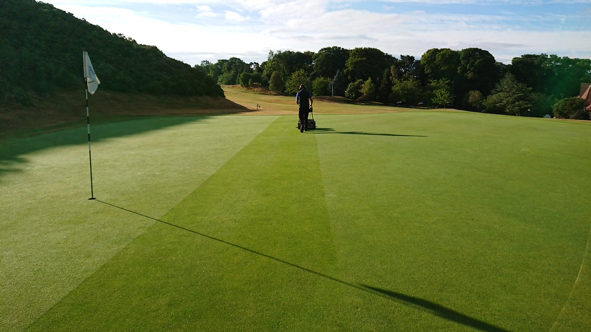 test Twitter Media - A wee stroll in the sunshine, with a hand mower. The perfect way to start a day. https://t.co/E1Dhr0Srni