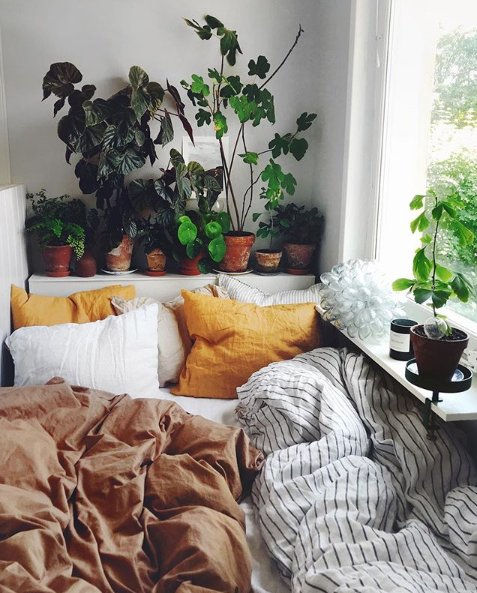 """""""I like this place and could willingly waste my time in it.""""  ― William Shakespeare #homelifeloves #quotes #bedroominspo   Image courtesy of @mosebackepic.twitter.com/p3vrnv7Hy1"""