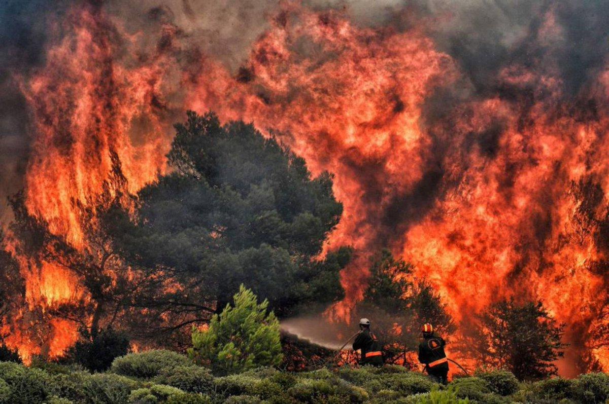 Internacionales | Ya son más de 70 los muertos en Grecia por los incendios