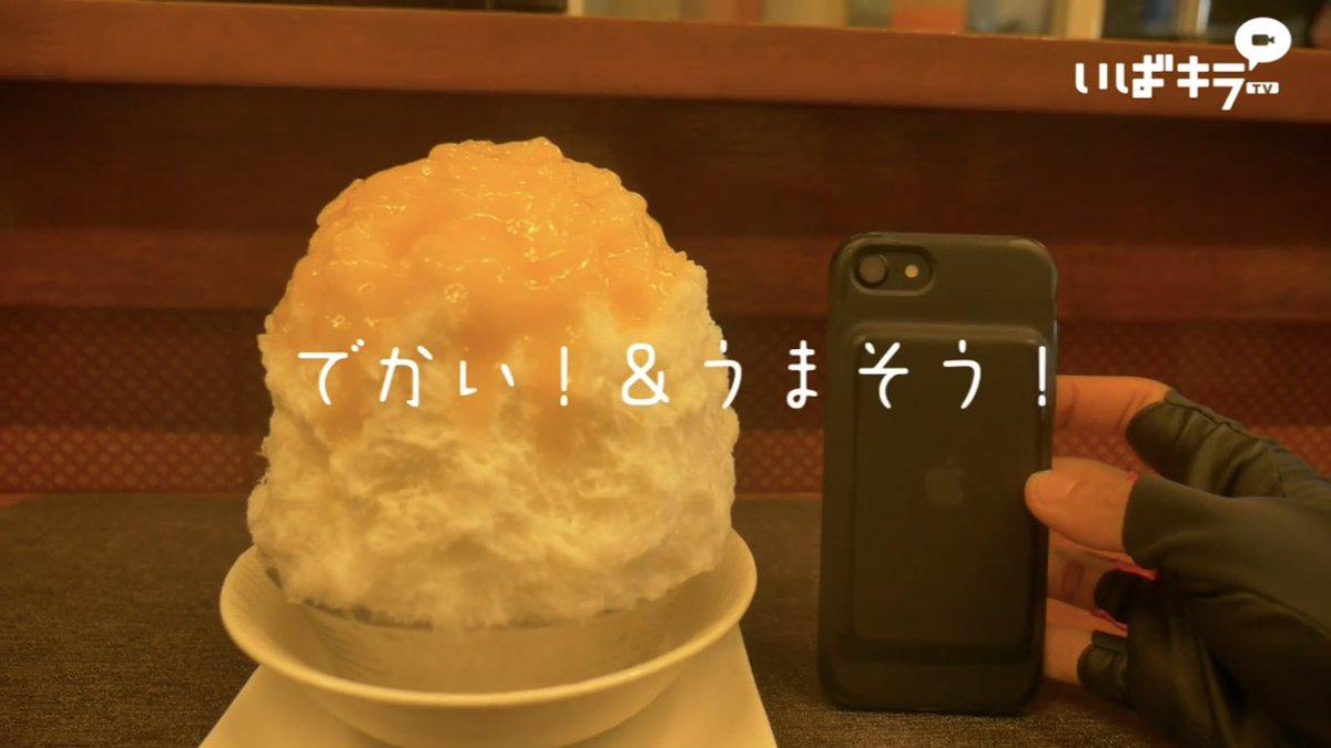 【🍧#かき氷の日🎐】 あつ〜い!こんな日は… かき氷が食べたいっっ!!! 今日はかき氷の日! 7月25日… 7(な)2(つ)5(ごおり) という語呂合わせらしいです! それにしてもあつ〜い! 動画はこちら↓ youtu.be/qbCT1piOJiU #さくら氷菓店