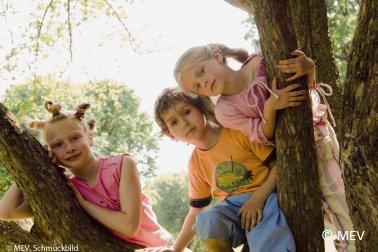 shop A Team Approach to Behaviour Management: A Training Guide for SENCOs