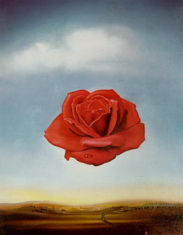Meditative Rose #salvadordali #dali<br>http://pic.twitter.com/soTliJoYwB