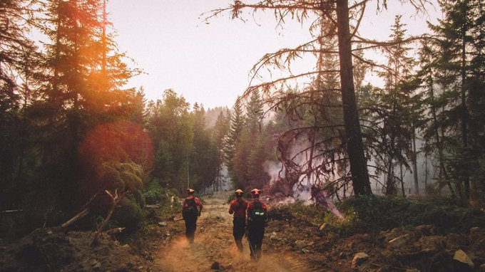 Looking for current info on #BCwildfire activity? Follow @BCGovFireInfo for updates, news & prevention tips from the BC Wildfire Service. Photo