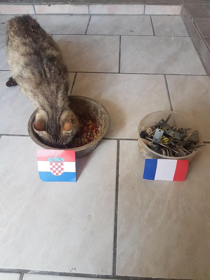 World cup final prediction