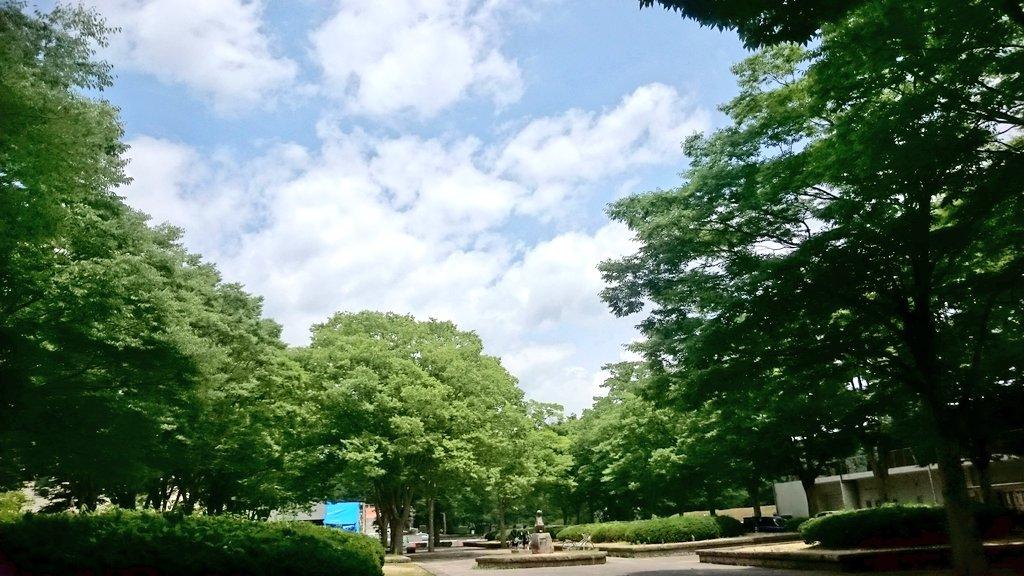 福島 県 白河 市 の 天気