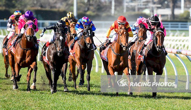Magnesium Rose ridden by Noel Callow wins the Ladbrokes Back Yourself Handicap at Caulfield Racecourse today. Photo