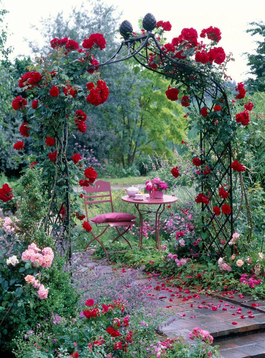 4 Garden Classics Stanzschablone von Jeanines Art No JAD10004