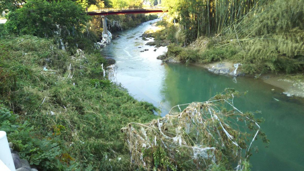 টুইটারে #津保川氾濫 হ্যাশট্যাগ