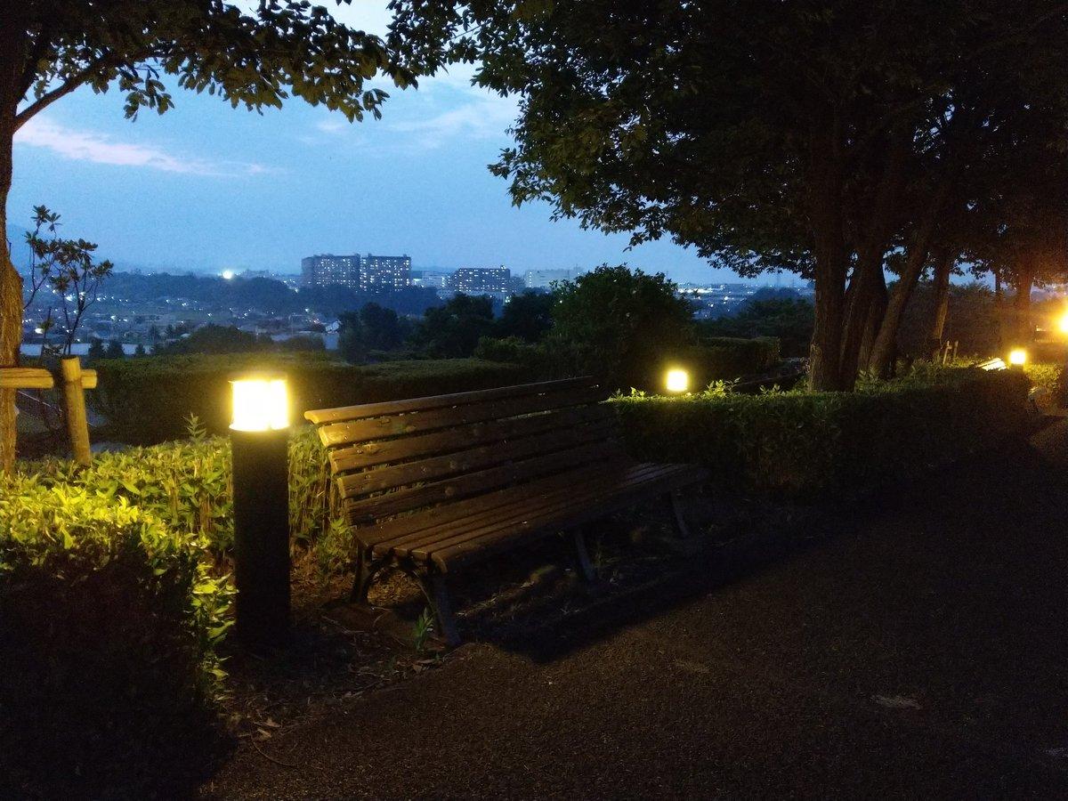 丘 の ぼう 公園 さい