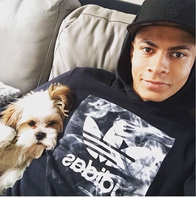 Footballers with animals's photo on Dele Alli