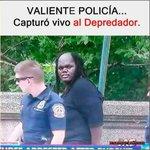#SabadoDeGanarSeguidores Twitter Photo