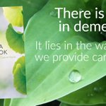 True #dementiacare is care that works with both the disabilities and the abilities of #dementia. When we do this, and respond to the person's specific and changing needs, we are providing person-directed care. Learn more in The Dementia Handbook: https://t.co/5GmxQMi6Wu