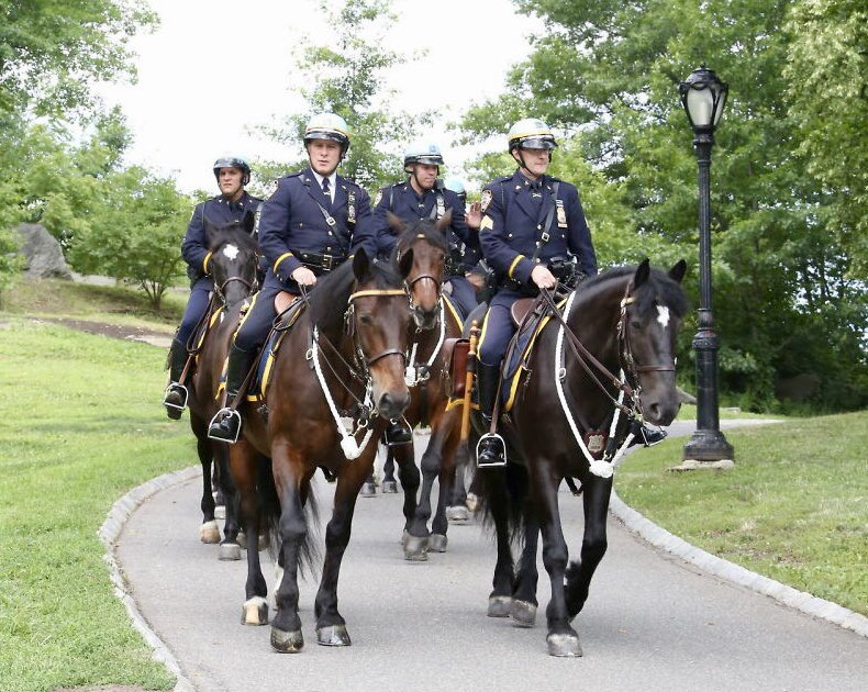 """""""Mankind's partnership with the horse has certainly evolved over the years and many of these associations remain true to their history and traditions."""" Go behind the scenes of the NYPD Mounted Unit in the latest edition of @SaratogaTODAY's Equicurean https://t.co/A0uqlxx8zM"""