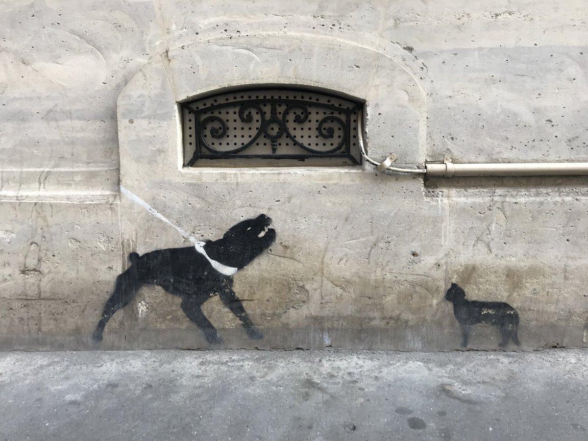 仏犬と仏猫。