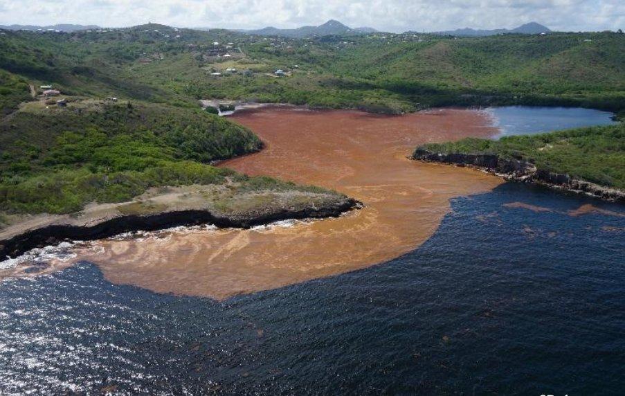 Un aspirateur géant pour nettoyer les côtes antillaises envahies par les sargasses https://t.co/CF4SGlxKIs