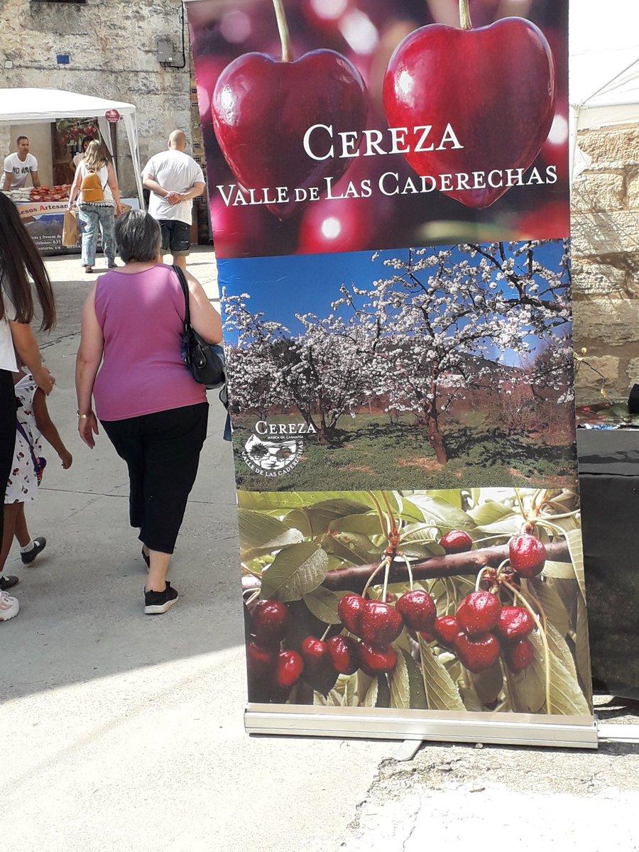 F. Caja Rural Burgos (@fundcajaruralbu) | Twitter
