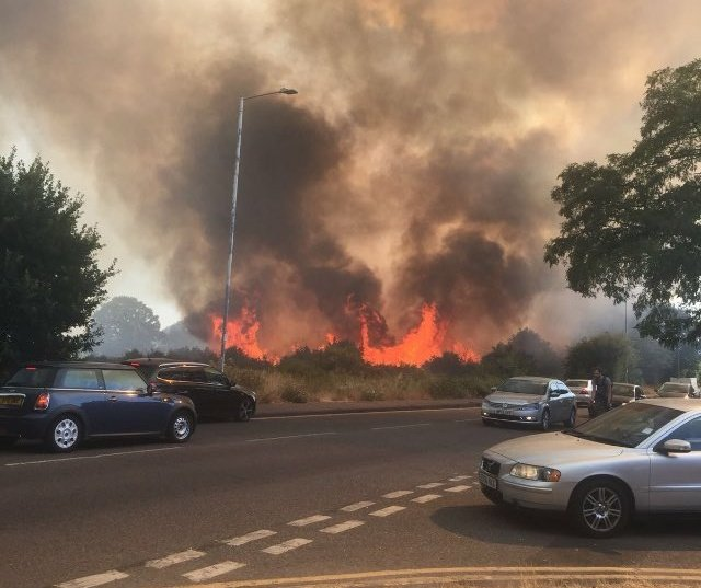 About 100 firefighters are dealing with a large grass fire in East London https://t.co/iw7QV19Idz