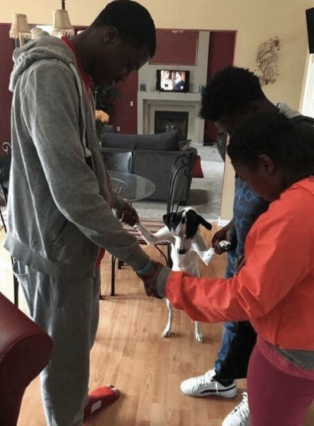 bts: have freedom, post what they want, are barely restricted, mention many times how happy they are manager armys: the boys are in danger. according to my ouija board bh gives them only one drop of water a day that they all have to share. karma is coming bang pd <br>http://pic.twitter.com/SCq1OllBIY