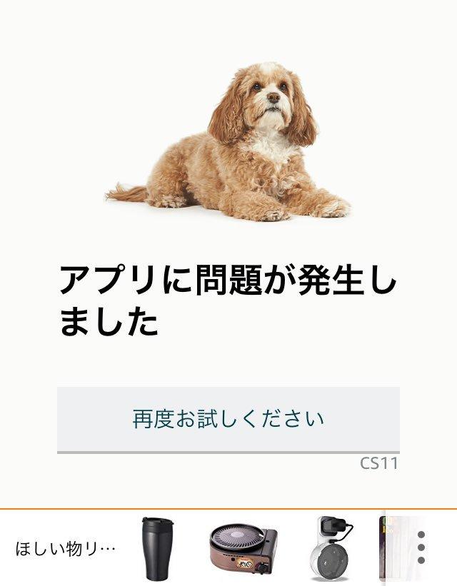 実はレア?Amazonのサーバーがダウンすると色々な犬の写真が表示されるwww