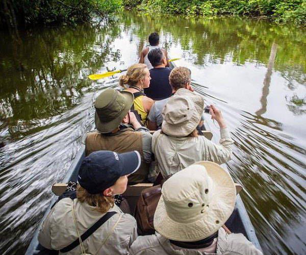 5 qualities of an Ecuadorian Amazon eco-lodge - A Luxury Travel Blog  https:// buff.ly/2rOLb8c  &nbsp;  <br>http://pic.twitter.com/hYI8Ph1RNI