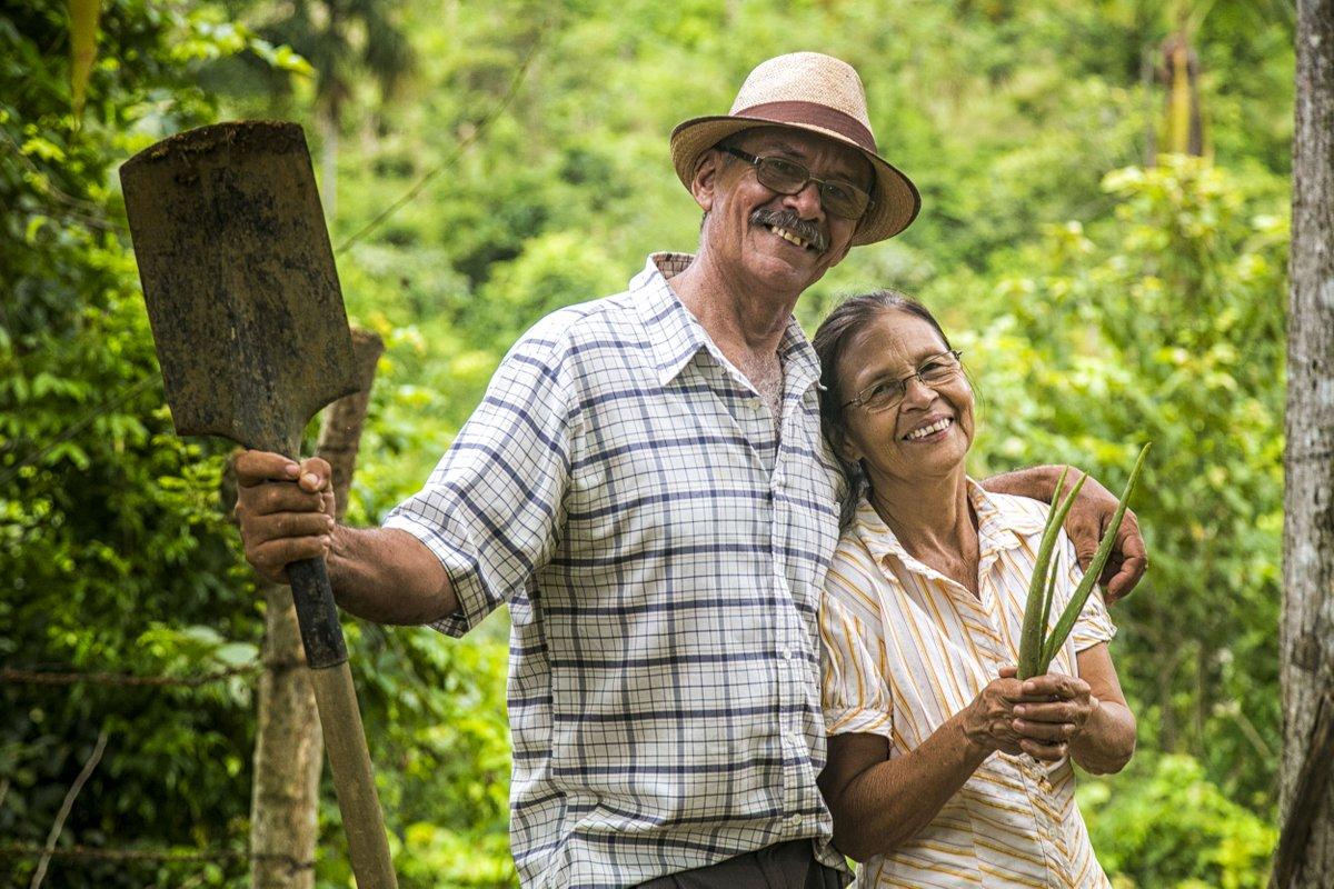 En #Colombie les choses ont changé après de nombreuses années de violence. A Montes de Maria, les fermiers déplacés sont rentrés chez eux et travaillent dur pour reconstruire un mode de vie durable  http://ow.ly/b4bH30kTiRX  #HLPF2018  - FestivalFocus